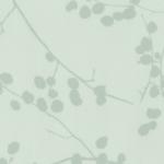 7007 Lichen
