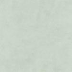 7011 Lichen